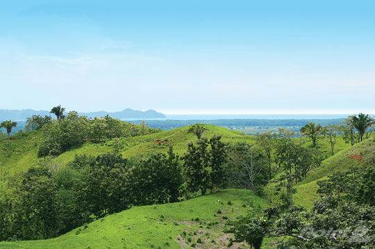 Fattoria in vendita in 1083 ACRES - Ocean View Ranch With Highway Frontage Only 10 Min North Of Quepos!!!, Manuel Antonio, Puntarenas ,003  , Costa Rica