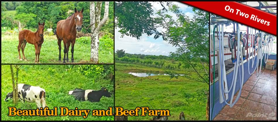 Residenziale in Beautiful Dairy and Beef Farm on Two Rivers, Volcan, Chiriqui, Volcan, Chiriquí   , Panama