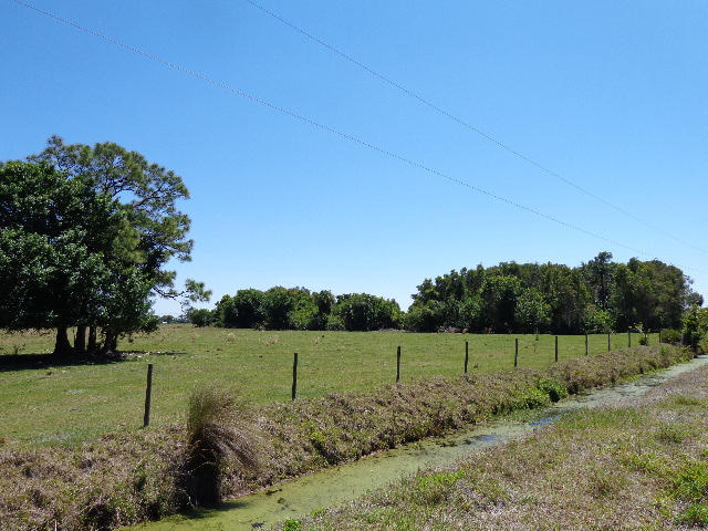 in SW Fox Brown Road, Indiantown, Florida ,34956