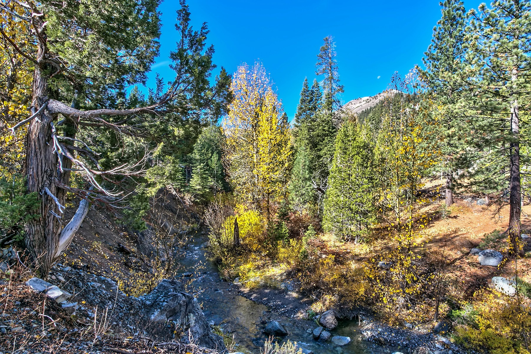 Compra di terreno in 1432 Mineral Springs Trail, Alpine Meadows, California ,96146