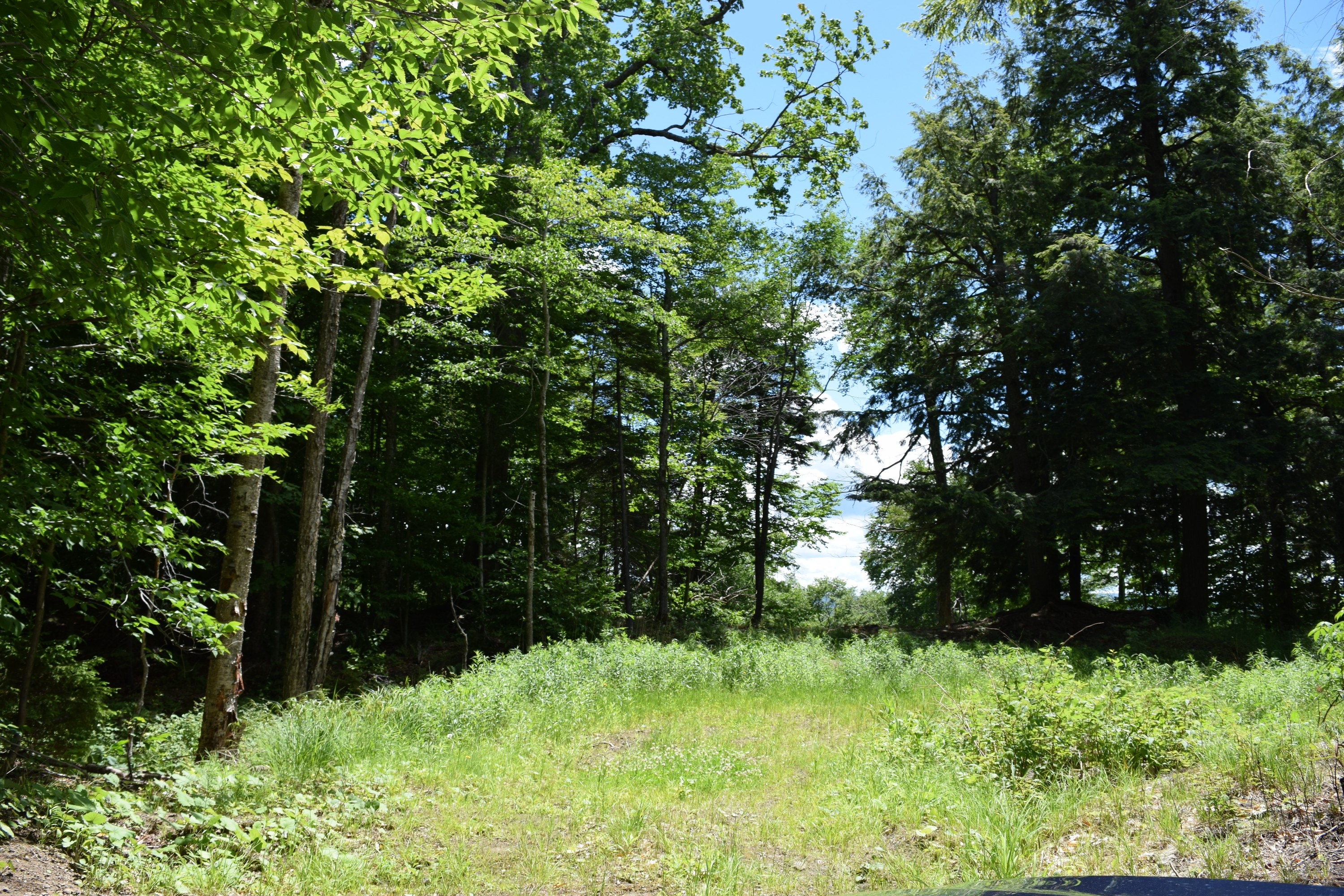 Compra di terreno in 130 Palisades Road East, Old Forge, NY ,13420