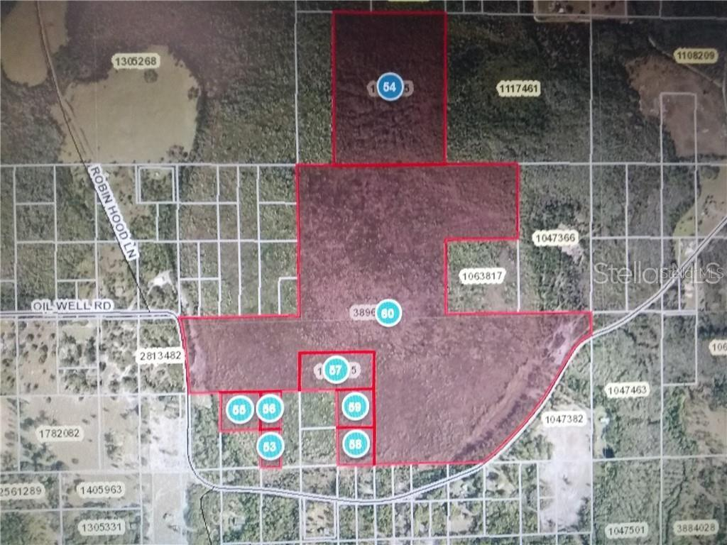 Acquisto commerciale in Oil Well ROAD, Clermont, Florida ,34714