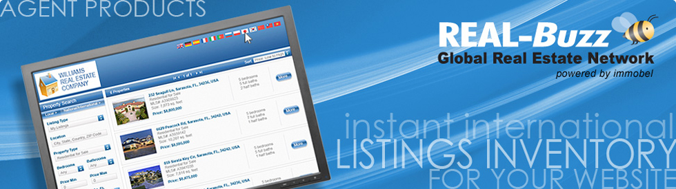 Agent IDX feature list